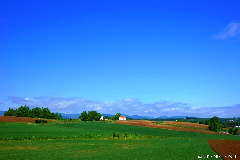 絶景探しの旅 - 0287 白い家のある風景 (北海道 美瑛町)