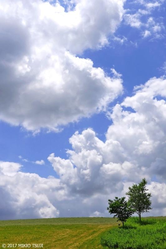 絶景探しの旅 - 0307 雲流れ行く北の大地  (北海道 美瑛町)