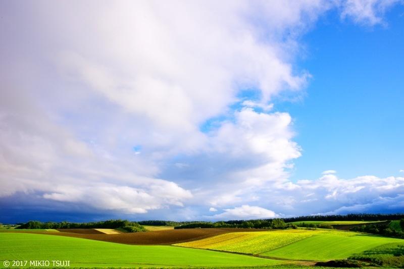 絶景探しの旅 - 0355 曇りのち晴れ 暗い雲と青空の境目 (北海道 美瑛町)