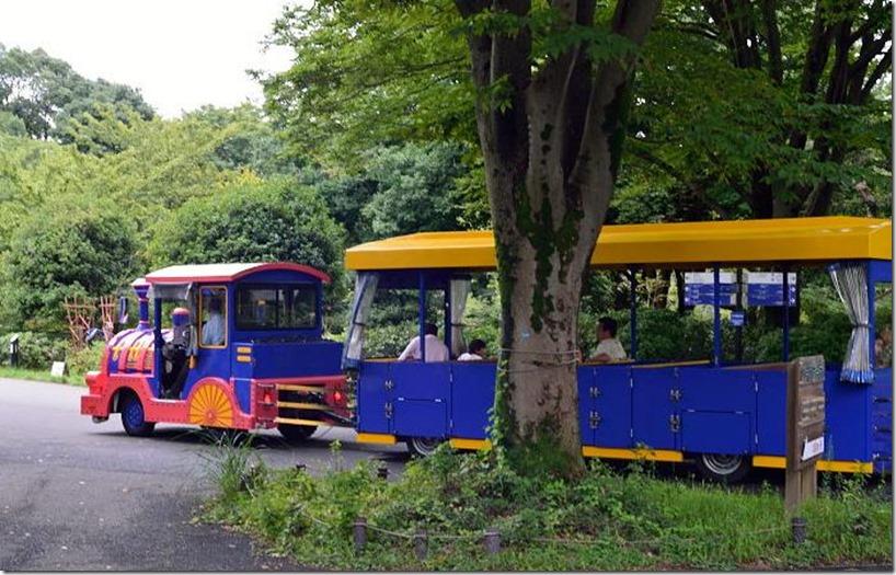 DFN_1884-バス